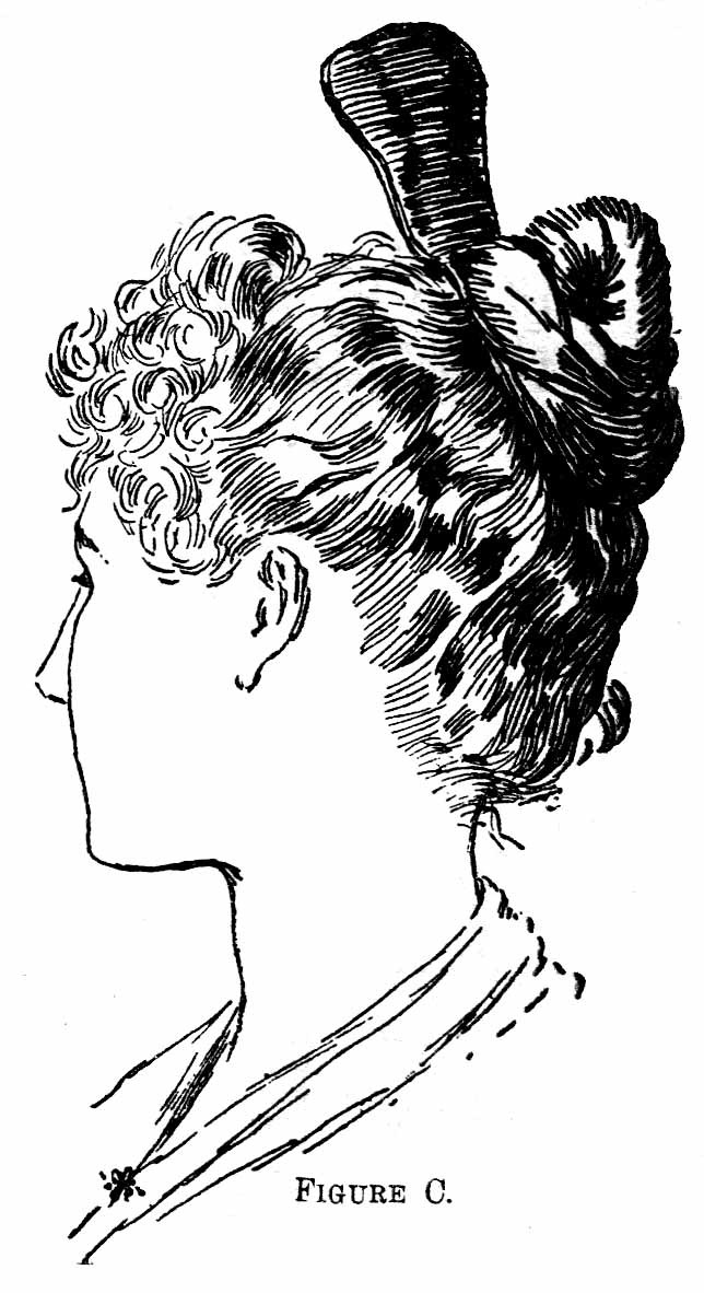 Back of Head Hair Drawing 1890 Hairstyles And Combs